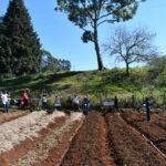 Organizações populares implementam horta comunitária no sudoeste do Paraná