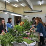 """""""É possível cultivar hortaliças, banana, milho e muito mais na cidade"""", afirma doutora em engenharia florestal e professora da UFPR"""