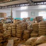 Em combate à fome, projeto distribuirá mais de 40 toneladas de sementes crioulas pelo Paraná